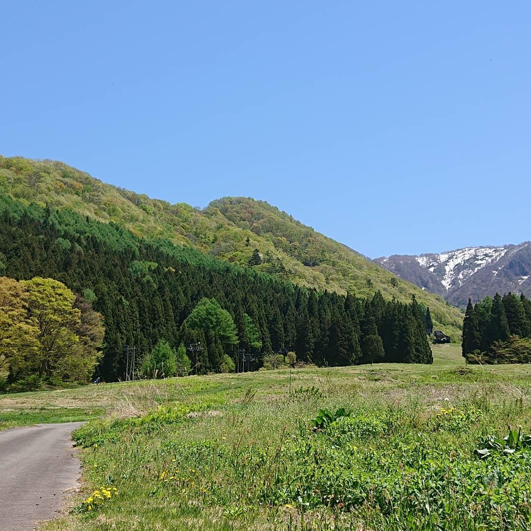 柄沢から山頂方面を見て