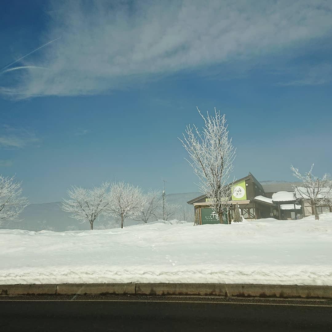 今年初、脱野沢温泉(笑)午前中はこんなにキレイで穏やかな風景️ 気分良く車を走らせていつもの飯山に買い物です。天気予報はやっぱり当たって今、外は吹雪です#野沢温泉 #民宿 #野沢温泉の宿 #野沢温泉スキー場 #山菜 #雪景色 #冬の風景 #源六 #げんろく #Nozawaonsen (Instagram)