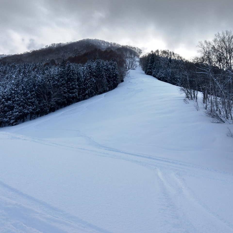 お客さまからのシェア写真️️️天気に恵まれキレイなスキー場の景色を送って下さいました実際に行けないスキー場のキレイな景色を見られて楽しい気分になりました #野沢温泉 #民宿 #野沢温泉の宿 #野沢温泉スキー場 #山菜 #源六 #げんろく #クレープ屋 #野沢温泉のスイーツ  #nozawa  #Nozawaonsen (Instagram)